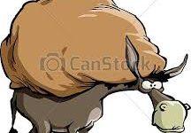 burro cargado